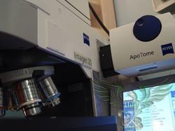 AxioImager com Apotome Zeiss