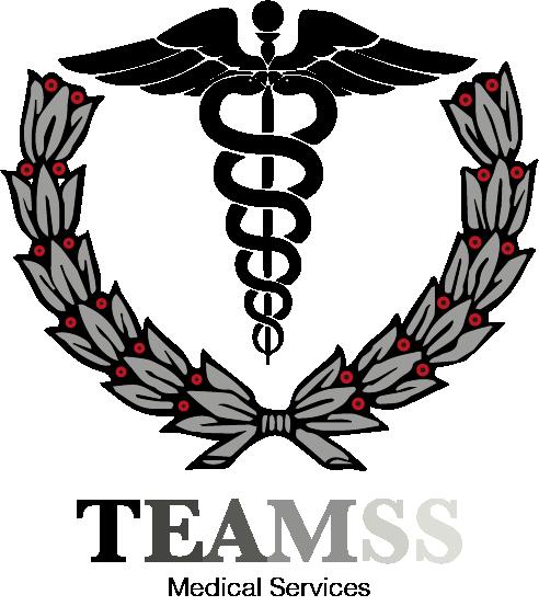 teamss logo