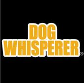 DOG-WHISPERER-LOGO.jpg
