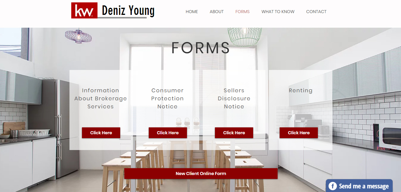Deniz Young Realty