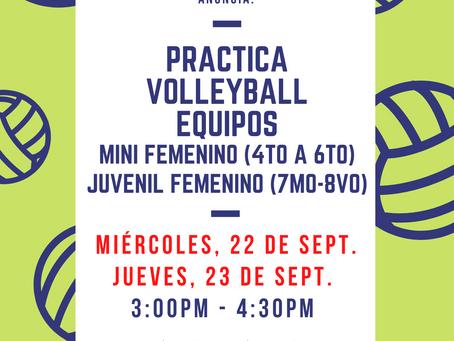 Prácticas de Volleyball