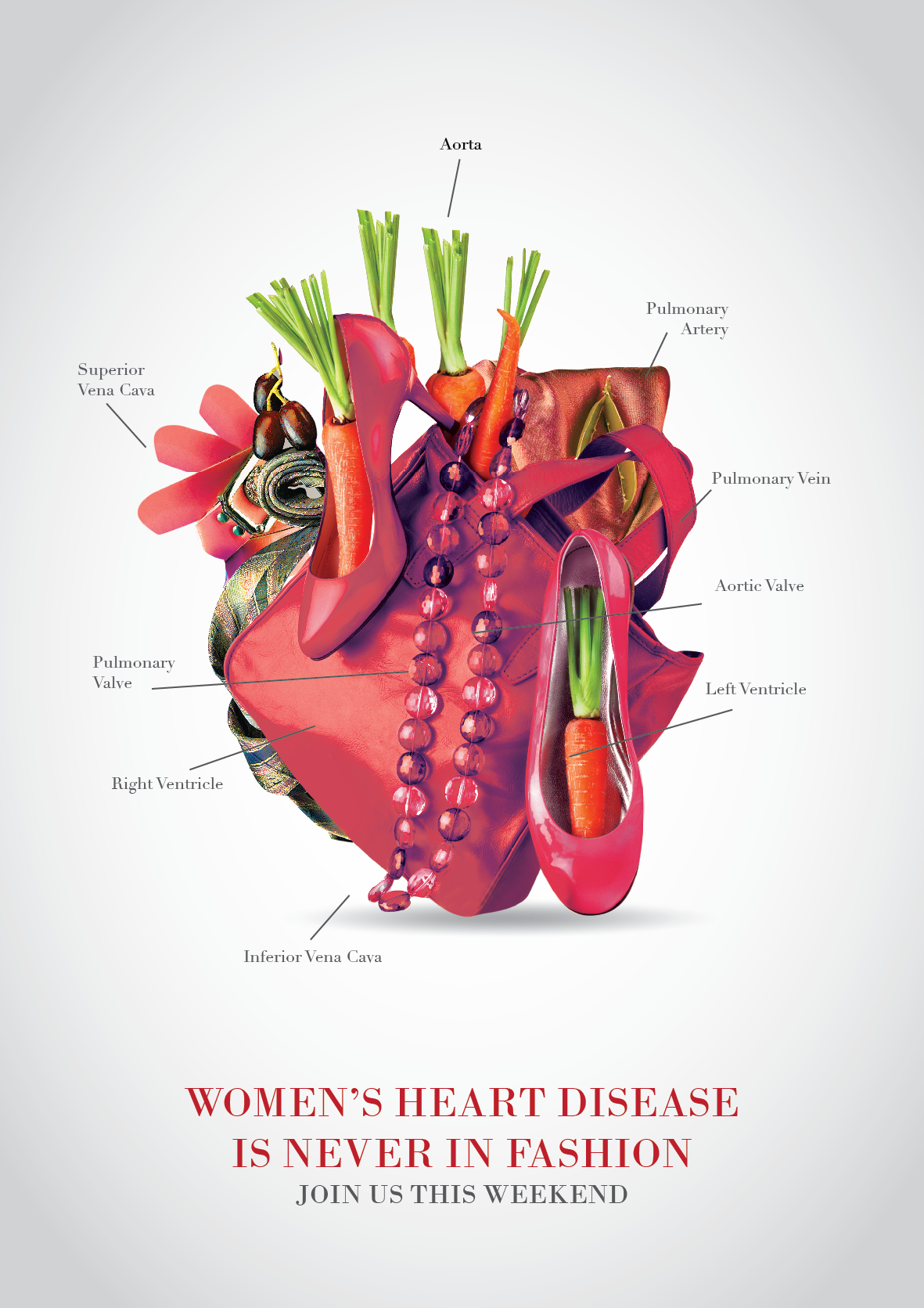 Women's Heart Disease Campaign