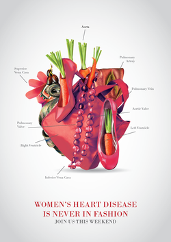 Women's Heart Disease Campaign
