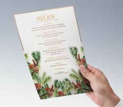 Helios Christmas Menu Design