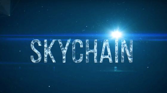 Skychain: A Neural Network in EveryHome!