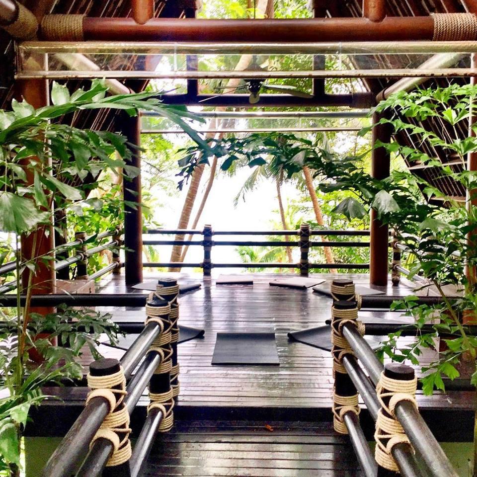 Beautiful locations for Sacred Kambo Chaing Mai
