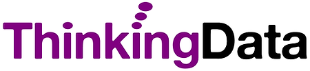 Thinking Data Logo