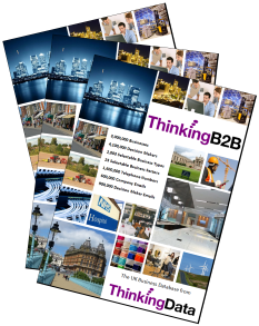 Download the ThinkingB2B Database Brochure