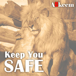 Keep You Safe (Official Cover Art).jpg