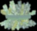 2020 logo PNG.png
