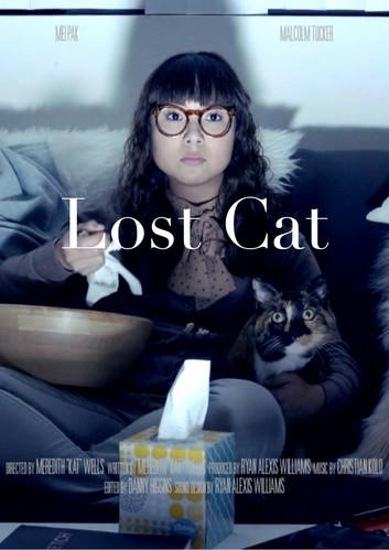 Lost_Cat_Poster.jpg