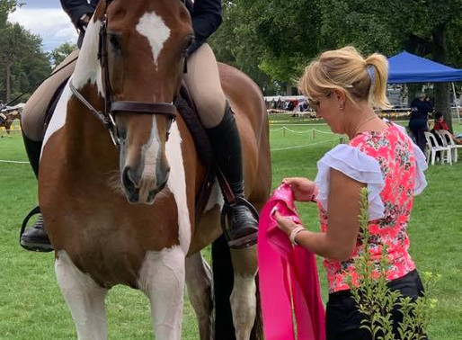 Sponsorship: PL Performance Horses Equitation Series