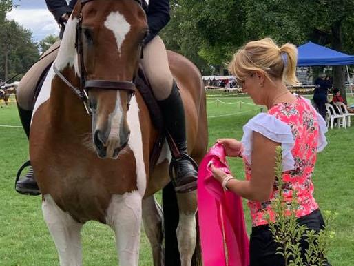 Sponsorship: PL Performance Horses Equitation Series