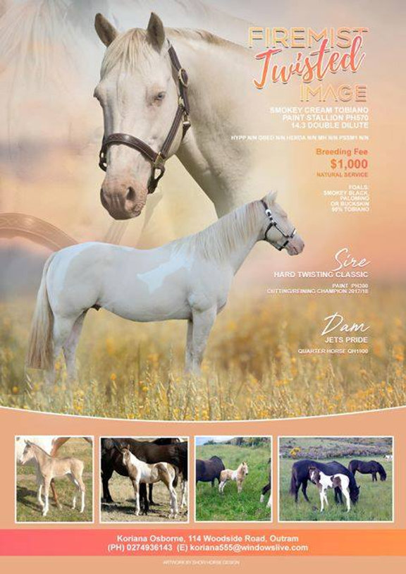 Mitana Quarter Horse Stud