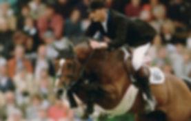 Grandsire PL Performnce Horses