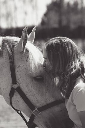 Equestrian Life