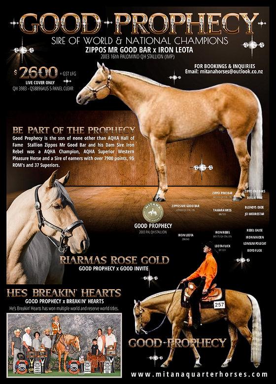 Good Prophecy Quarter Horse Stallion