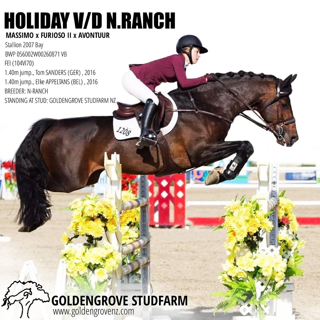 Holiday v/d n.Ranch