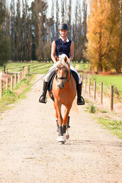 Bec Kerr Maungatua Equestrian