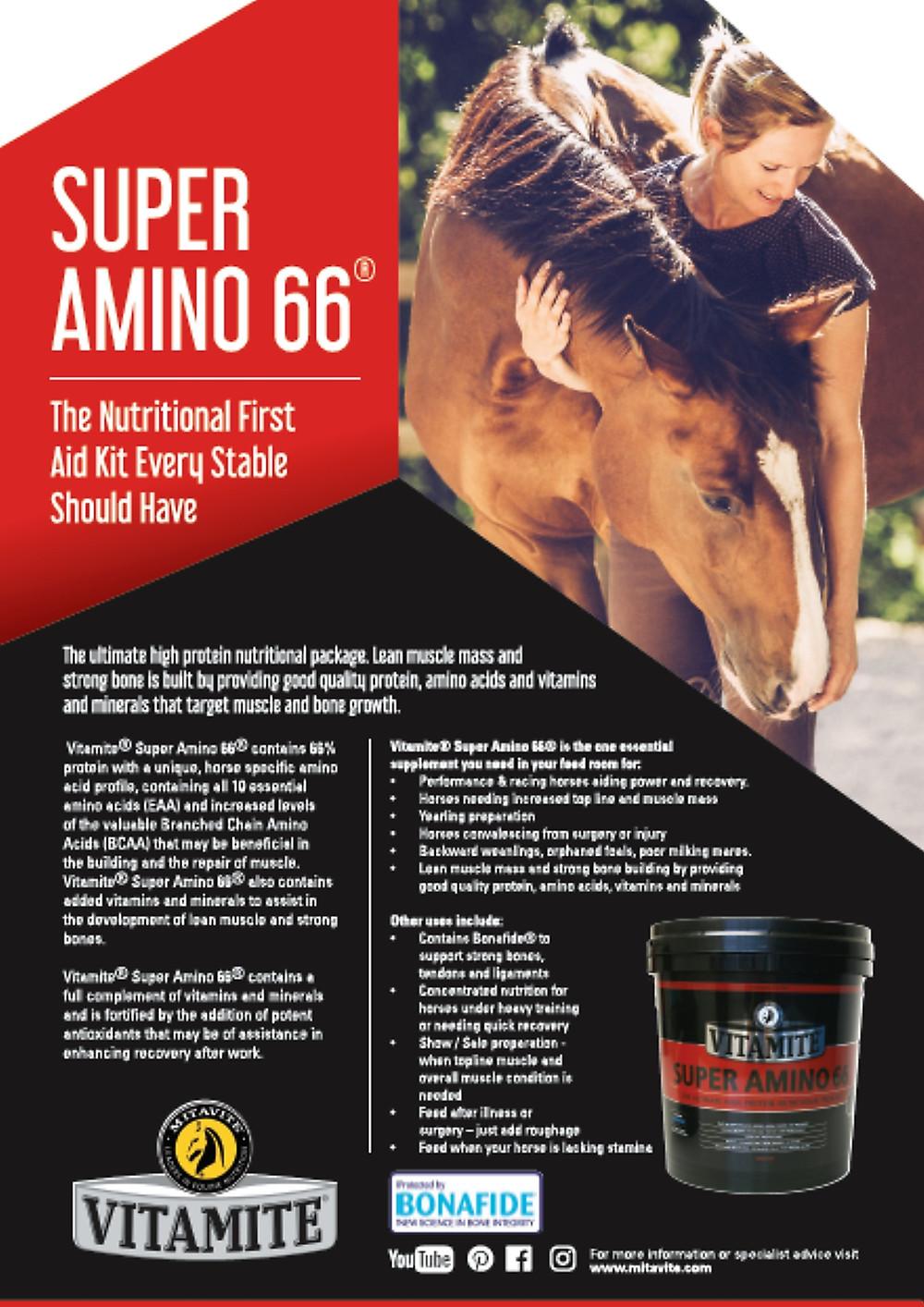 Mitavite Super Amino 66