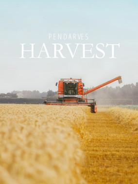 Farming Mid Canterbury