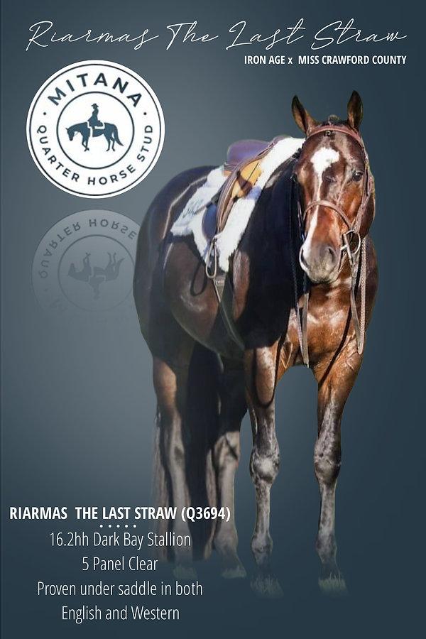 Riarmas The Last Straw