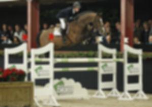 Zambesi TN Stallion