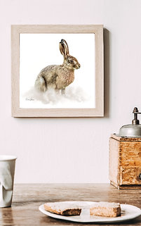 **NEW** COUNTRY HARE (2)