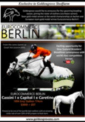 Eurocommerce Berlin