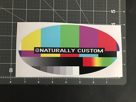 100 Custom Oval or Rectangle Vinyl Stickers