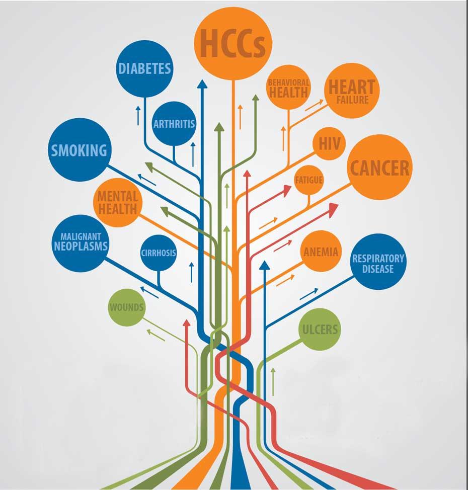 Online HCC Risk Adjust Medical Coding