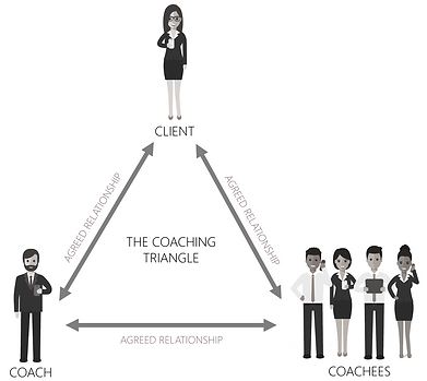 coaching triangle_edited.png