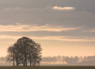 Why do we love the mist?