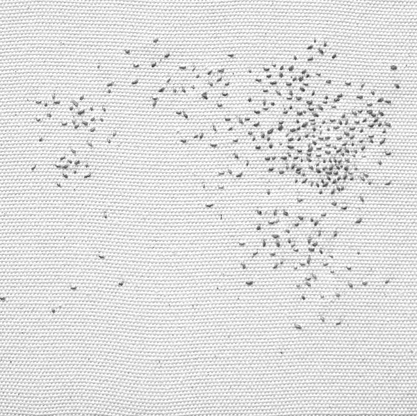 02-dots in space-110x105cm-2015detail_ed