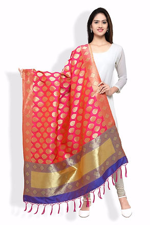 Banarasi Silk dupatta folder image.jpg