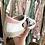 Thumbnail: Sapatilhas estrela camufladas/rosa