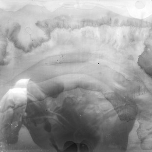 The picture was taken under water by a film camera of the size 18 by 24 cm. Pinhole. Without a shutter. X-ray film. Exposure about 50 sec.