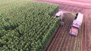 Фото и видео отчеты сельхоз работ