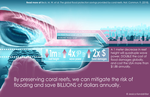 Coral Reefs, Wave Power, and Flood Risk Graphic
