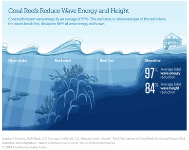 Coral Reefs and Wave Energy