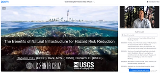 A Discussion of the Science Behind the Effectiveness of Natural Infrastructure for Hazard Risk Reduction. Zoom webinar hosted by the National Wildlife Federation.