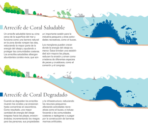 Spanish- Healthy v. Degraded Coral Reef Graphic