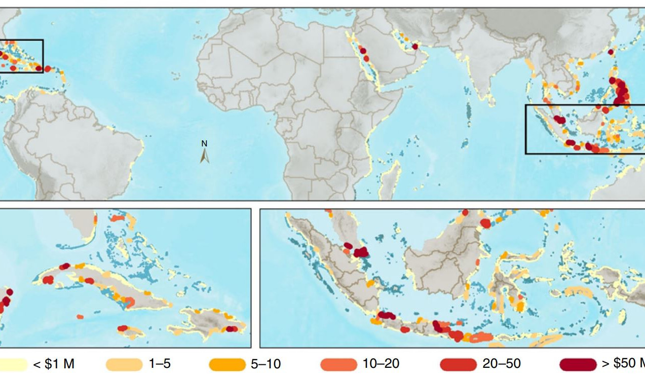 Flood Protection Value of Global Coral Reefs