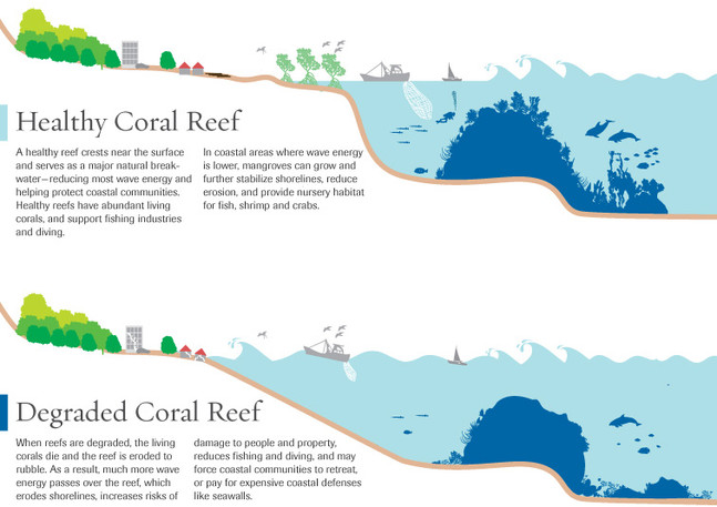 Healthy Reefs v. Degraded Reefs