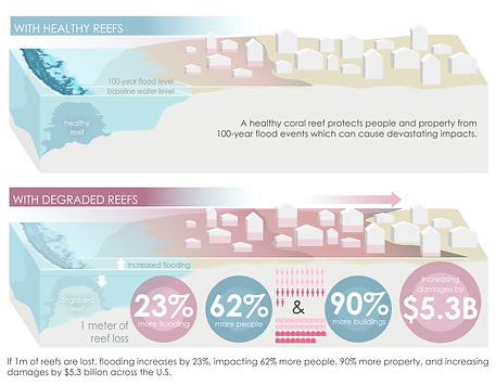 Infographic demonstrating results from a Nature Sustainability article by Borja Reguero, Mike Beck, and colleagues at UCSC, TNC, & USGS showing the protective benefits of coral reefs.