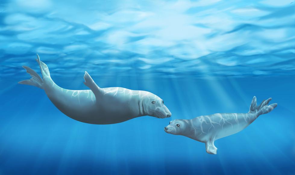 Underwater Digital Painting