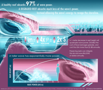 Coral Reefs, Wave Power, and Flooding Infographic