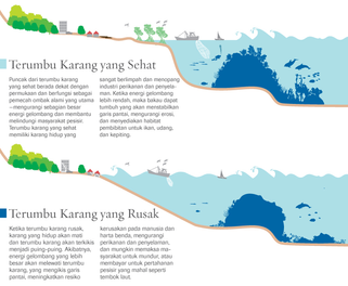 Indonesian- Healthy v. Degraded Coral Reef Graphic