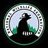 SciAm Logo.jpg