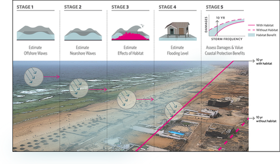 Assessing global flood protection savings provided by coral reefs
